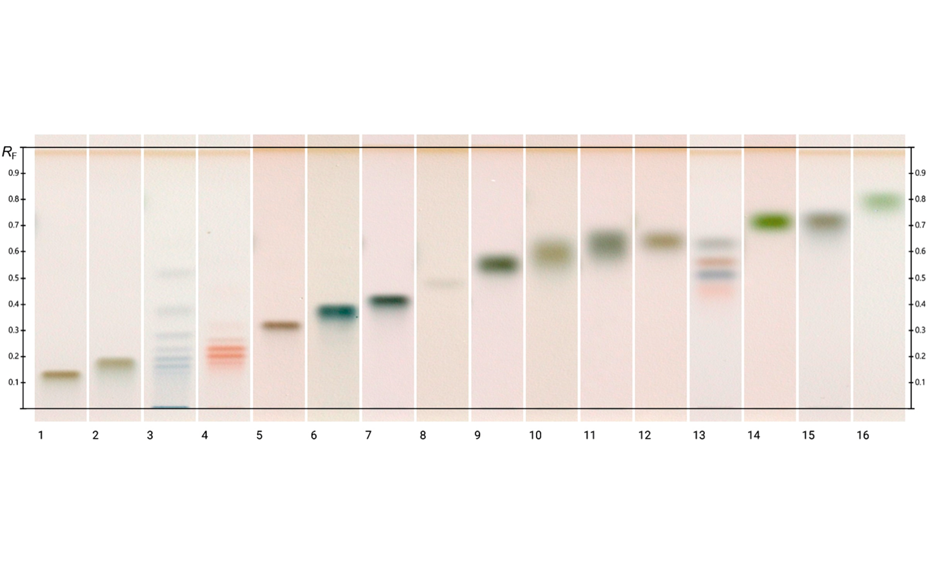 HPTLC chromatograms of different standards (method 3) at white light after derivatization; track 1: galacturonic acid, 2: glucuronic acid, 3: maltodextrin, 4: fructo-oligosaccharides, 5: raffinose, track 6: maltotriose, 7: lactose, 8: trehalose, 9: galactose, 10: ribose, 11: mannose, 12: arabinose, 13: mixture of fructose, maltose, sucrose, and glucose (250 ng each), 14: fucose, 15: xylose, 16: rhamnose (1 μg each, except for the mixture on track 13)